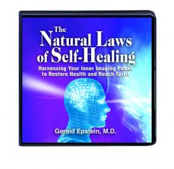 The Natural Laws of Self–Healing Front Cover